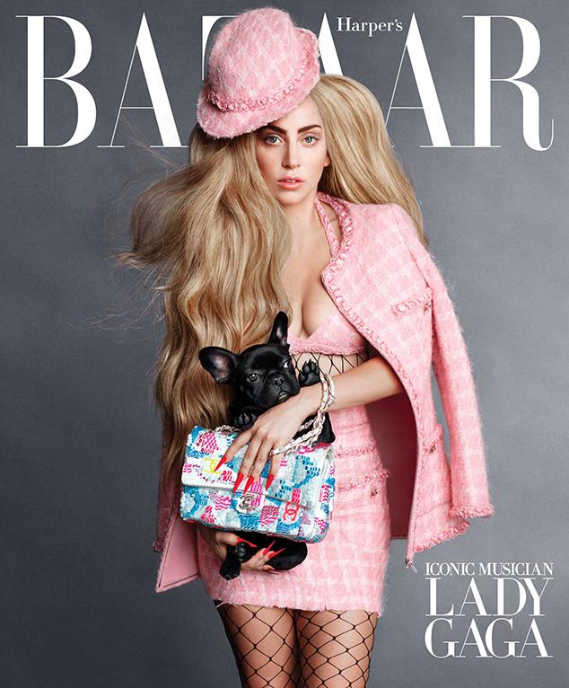 mgluxurynews Lady Gaga Asia Dog
