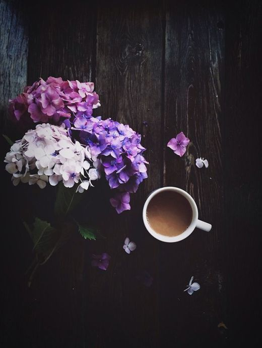 coffee and hydrangeas